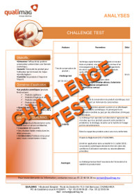 Document Challenge Test
